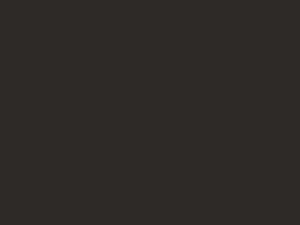 Logo Berufsfotografen Österreich